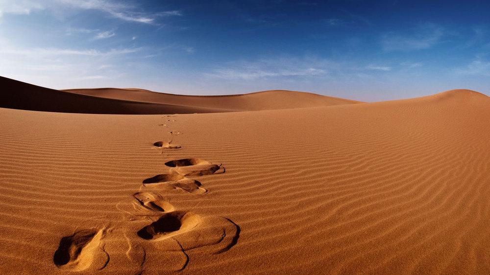 Desert-Tracks1.jpg